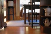 Stemning i kjøkkenet