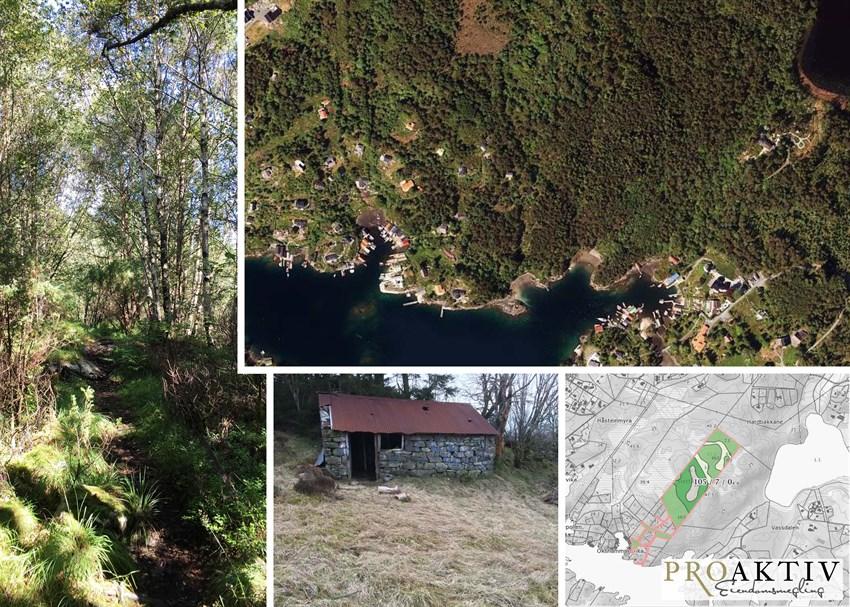 Proaktiv eiendom- Stort LNF- område på Hjellestad som rett ved Steingardsvikane