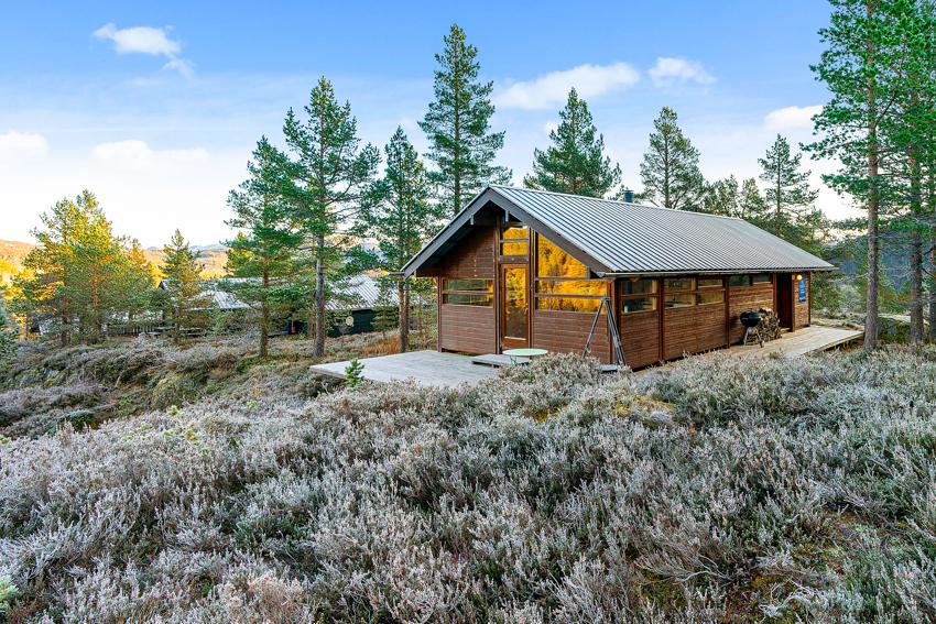 Velkommen til Furuåsen - Ålhytte med nydelig beliggenhet like ved skiløypen