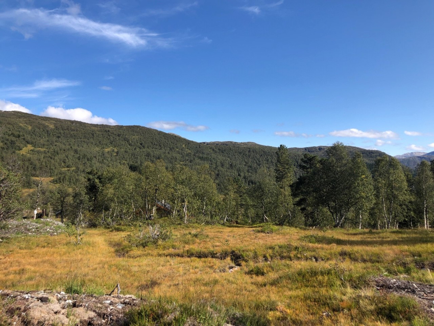 Proaktiv Eiendomsmegling-Naturtomt med flott utsikt